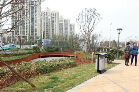 镇江近百社会主体参与海绵城市建设-美国红点红枫|秋