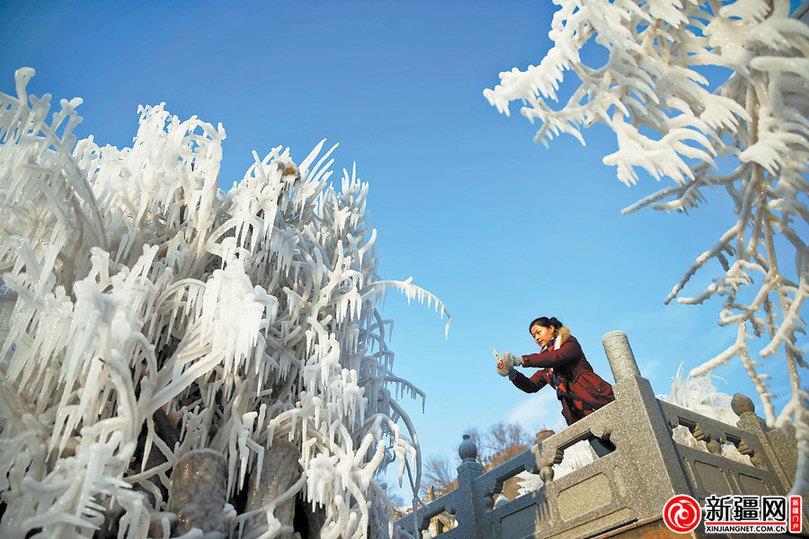 1月5日消息:1月4日,在新疆乌鲁木齐市红山公园南大门人工湖,一位游客