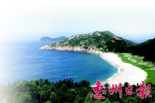 惠州:共建生态环境 共享绿色发展成果-美国红点红枫