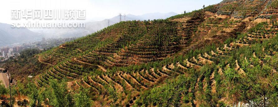 重庆市万州区生态环境现状及发展战略初探